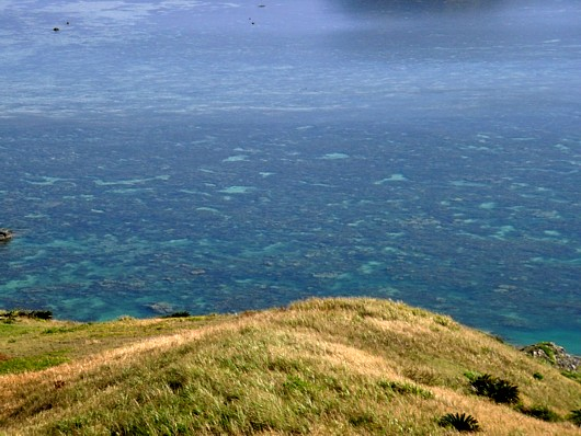 干潮のサンゴ礁