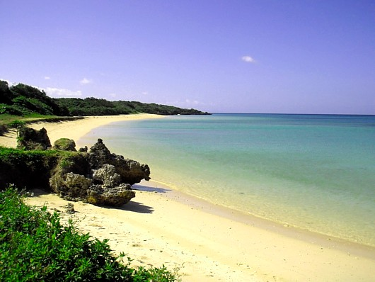 近所の浜。(アオリイカも釣れる!)