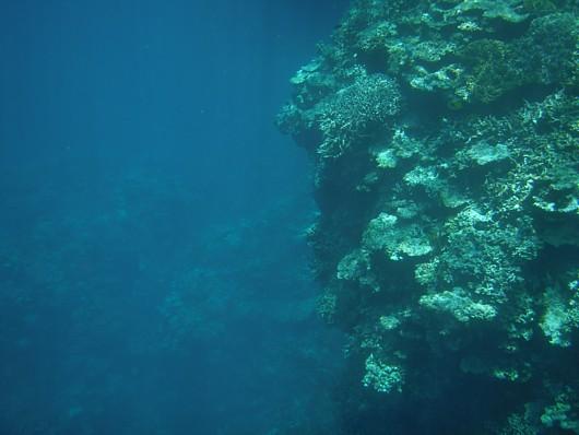 左側は水深15mほど。