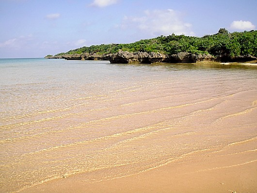 近所の浜。