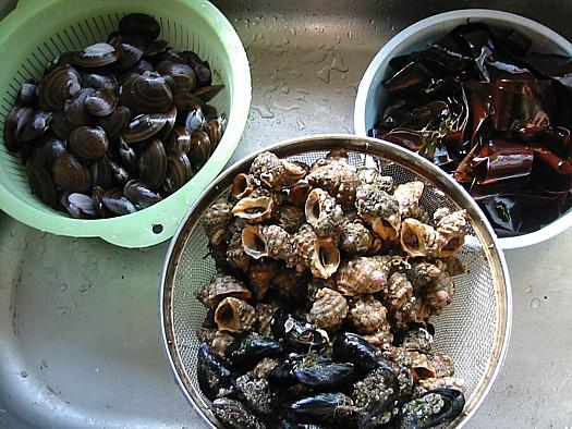 貝を食べると肝臓が調子イイ.JPG